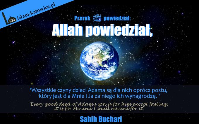 prokok-muhammad-pokoj-z-nim-10