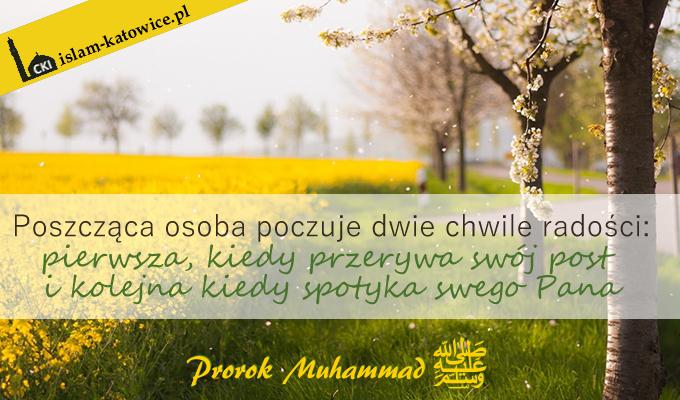 prorok-muhammad-pokoj-z-nim-16